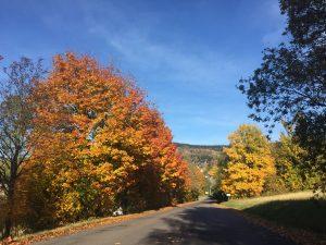 podzim v čenkovicích