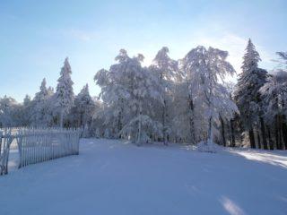zima v čenkovicích